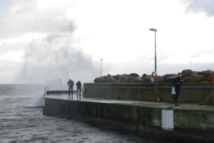 Coasteering 2011 4
