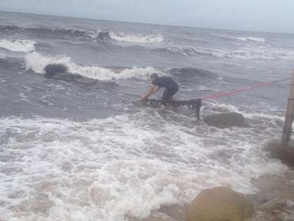 Coasteering 2012 2